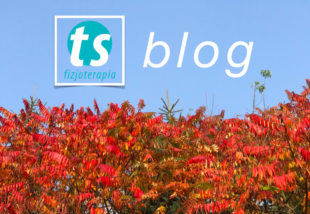 ts blog